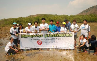 Mangrove Preservation toward Sustainable Livelihood for the Fisherfolk